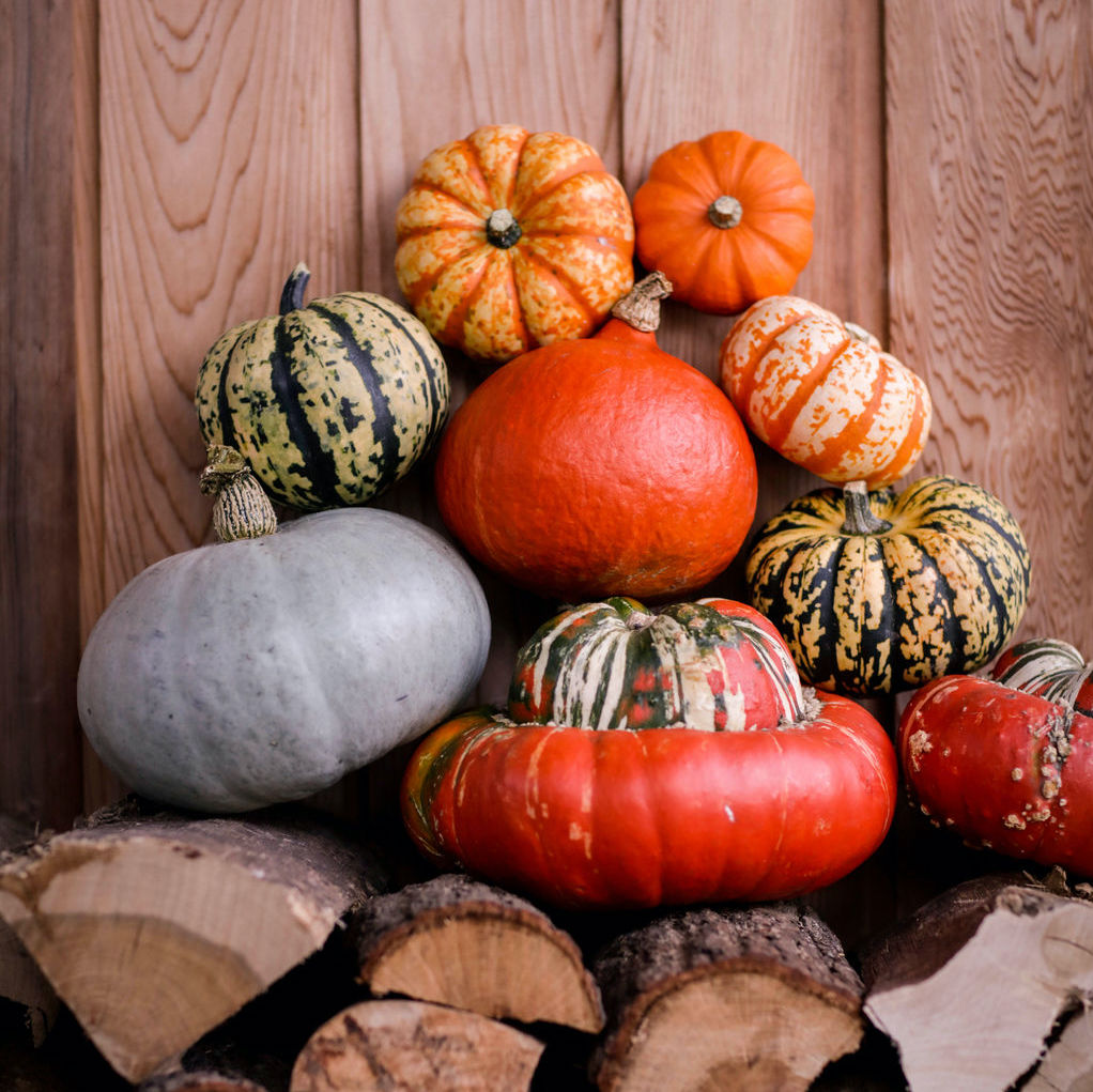 Castle Farm Pumpkins & Squashes - now available