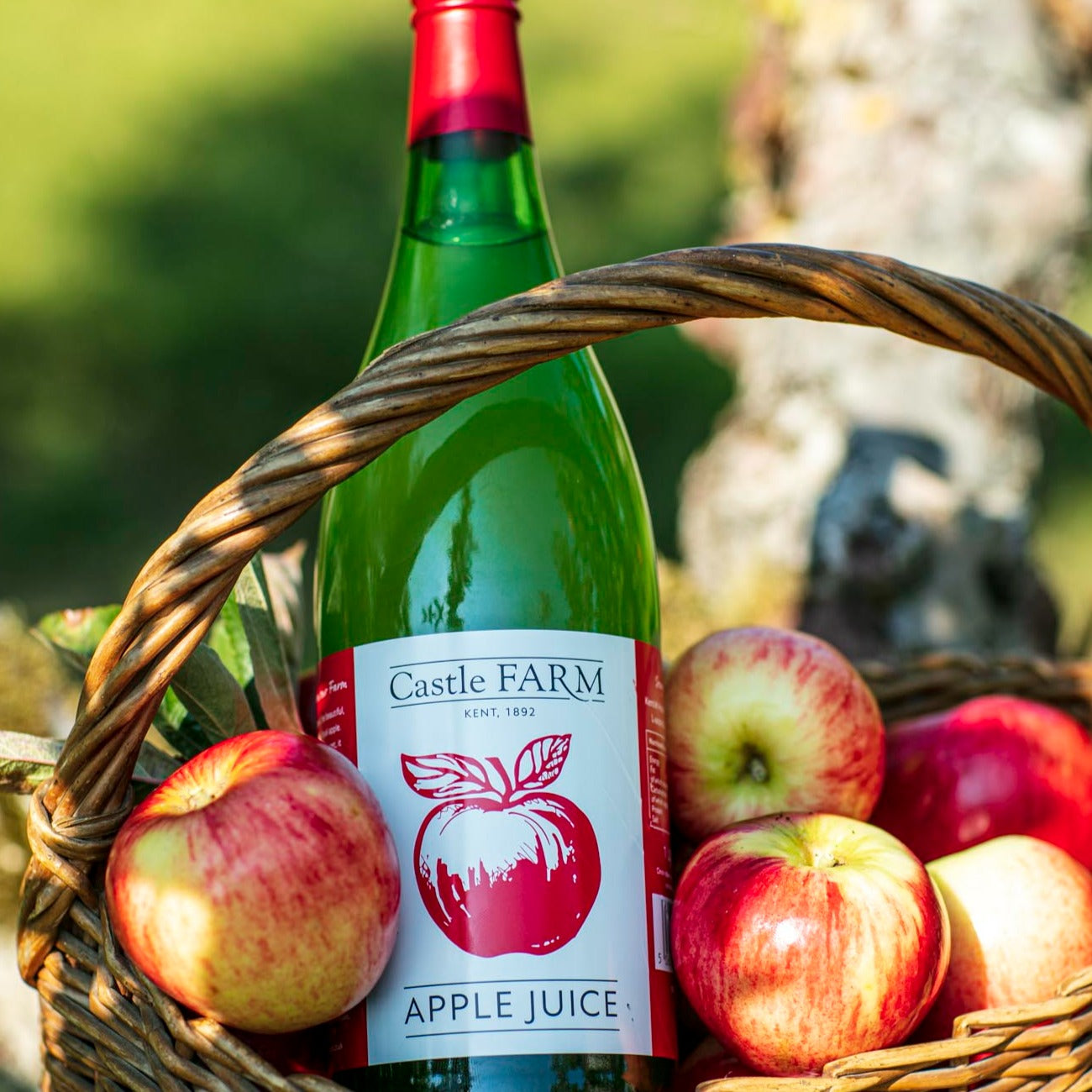 CASTLE FARM APPLE JUICE