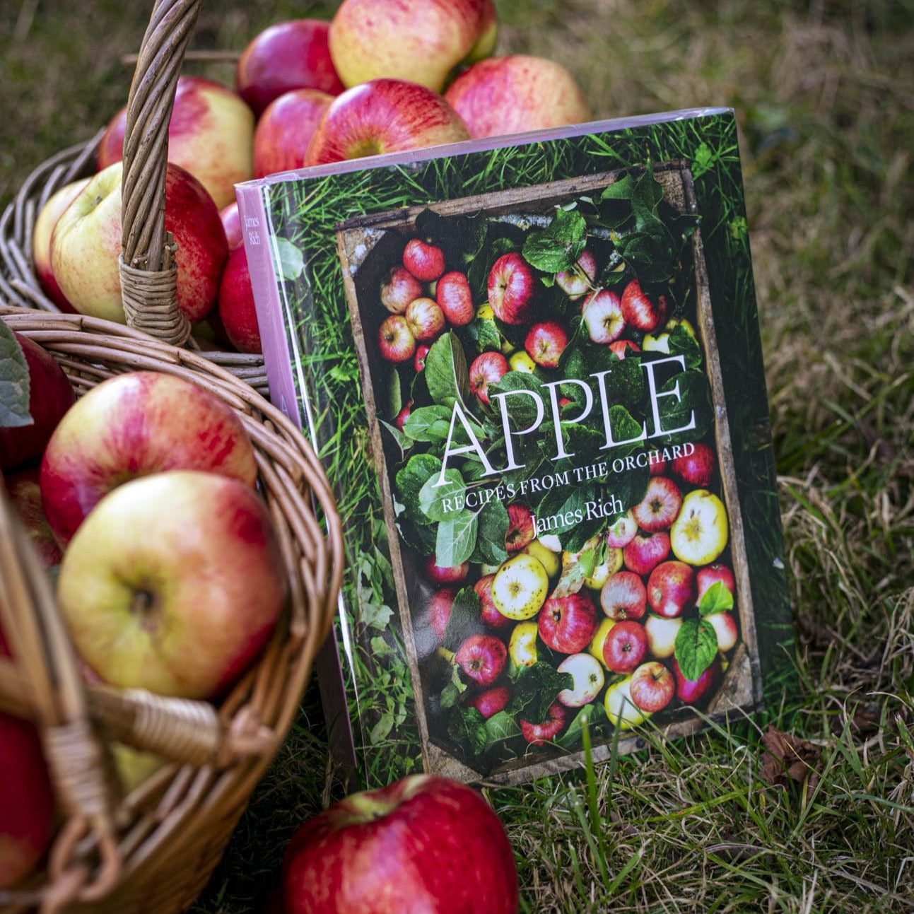 APPLE: RECIPES FROM THE ORCHARD - BY JAMES RICH