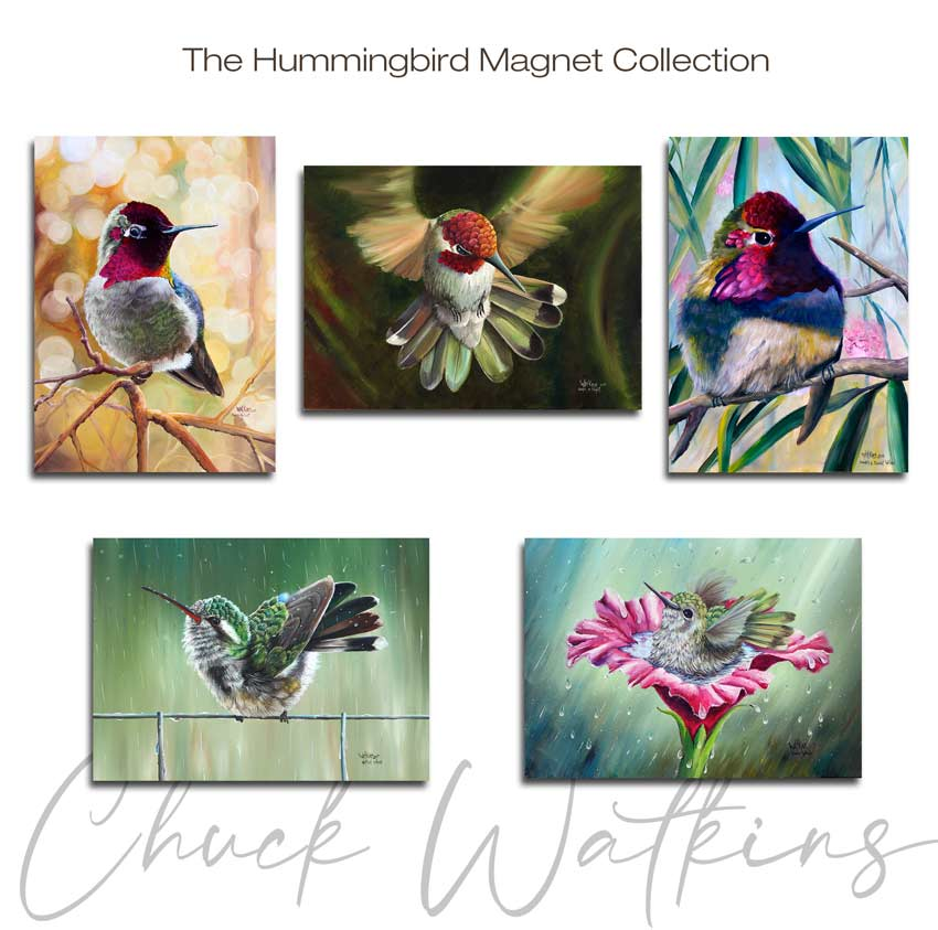 Hummingbird Magnet Collection