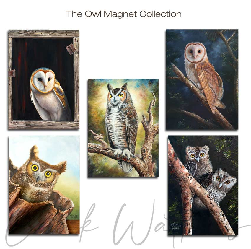 Owl Collection Magnet Collection