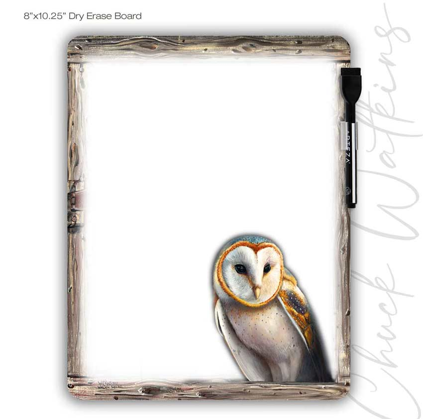 Watchful Barn Owl Dry Erase Board