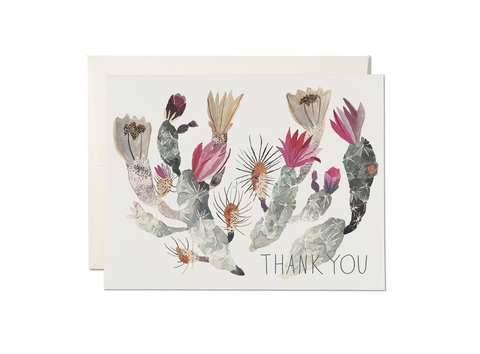 Thank you - Cactus