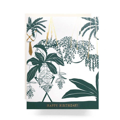 Hanging Houseplant Birthday