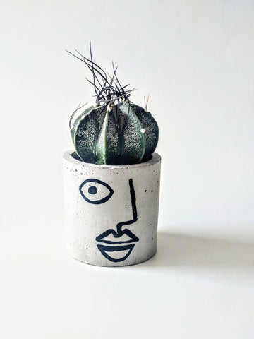 ForgottenProperty - Alejandro Concrete Planter