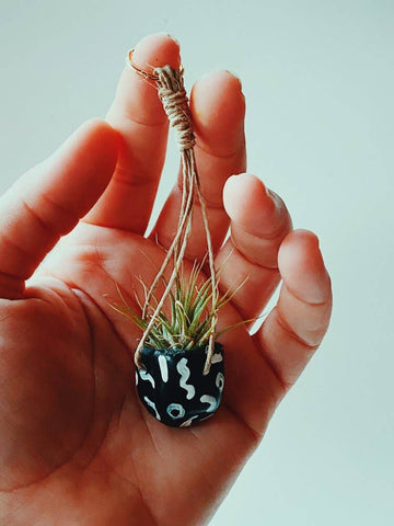 Shapes Mini Hanging Planter