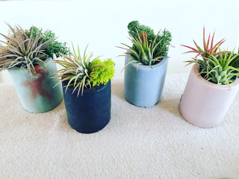 Cement Tilly Planter