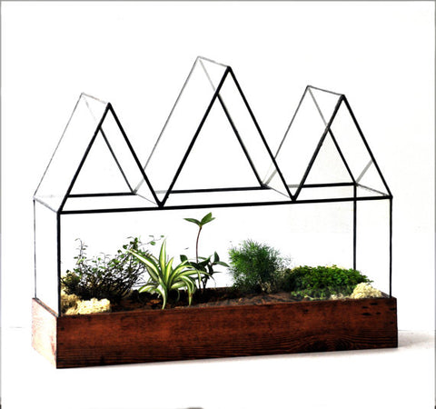 Large Glass Terrarium Fortune Case