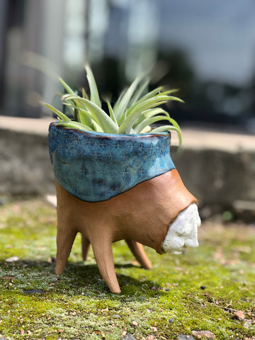Blookat Blues Planter