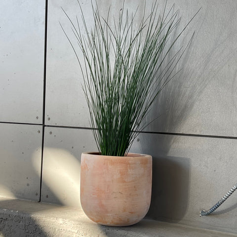 Dark Grass in Aged Terra Cotta Planter