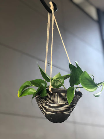 On the Horizon Hanging Pothos Planter