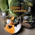 Plants + Pumpkins