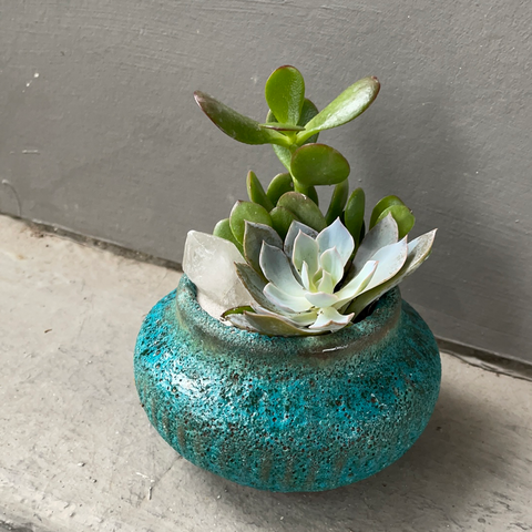 Succulent Crystal Garden in Sea Foam Planter