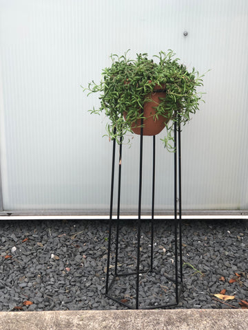 String of Tears Plant Stand