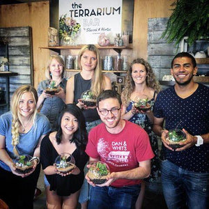Terrarium Group Build