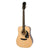 Epiphone DR-100 Acoustic Guitar Square Shoulder Dreadnought Natural - EA10NACH1
