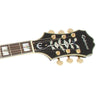 Epiphone Sheraton II Pro Electric Guitar Thin-Line Semi-Hollow Ebony - ETSPEBGH1