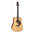 Takamine EF340S-TT Thermal Top Series Acoustic Guitar Dreadnought Natural w/ Pickup