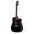 Takamine EF381SC Legacy Series Acoustic Guitar 12-String Dreadnought Black w/ Pickup