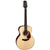 Takamine G10 Series Acoustic Guitar NEX Natural Satin - TGN10NS