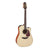Takamine P4DC Pro Series 4 Acoustic Guitar Dreadnought Natural w/ Pickup