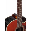 Takamine P5DC-WB Pro Series 5 Acoustic Guitar Dreadnought Whiskey Brown w/ Pickup
