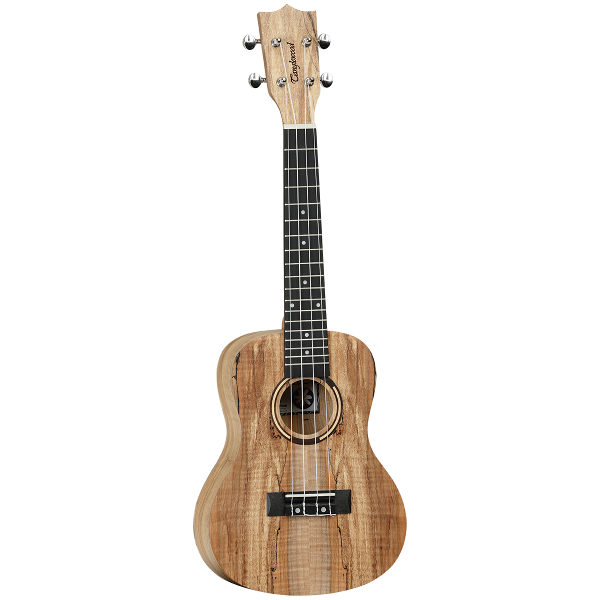 Tanglewood TWT10 Tiare Concert Ukulele All Spalted Maple Ivory White Uke w/ Bag