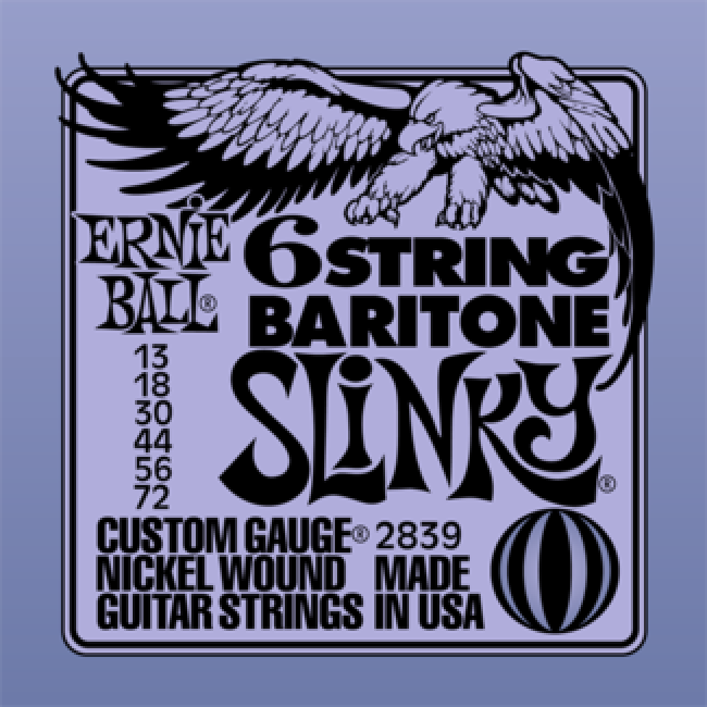 Ernie Ball 2839 Guitar Strings