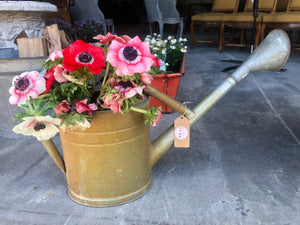 Gorgeous Zinc Watering Can from a Provencial Brocante