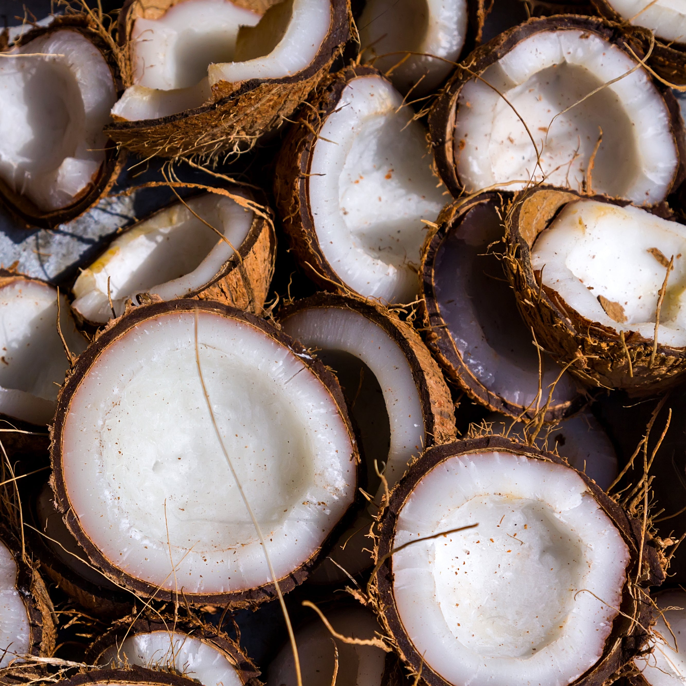 Fresh Coconut Essential Oil for Skin