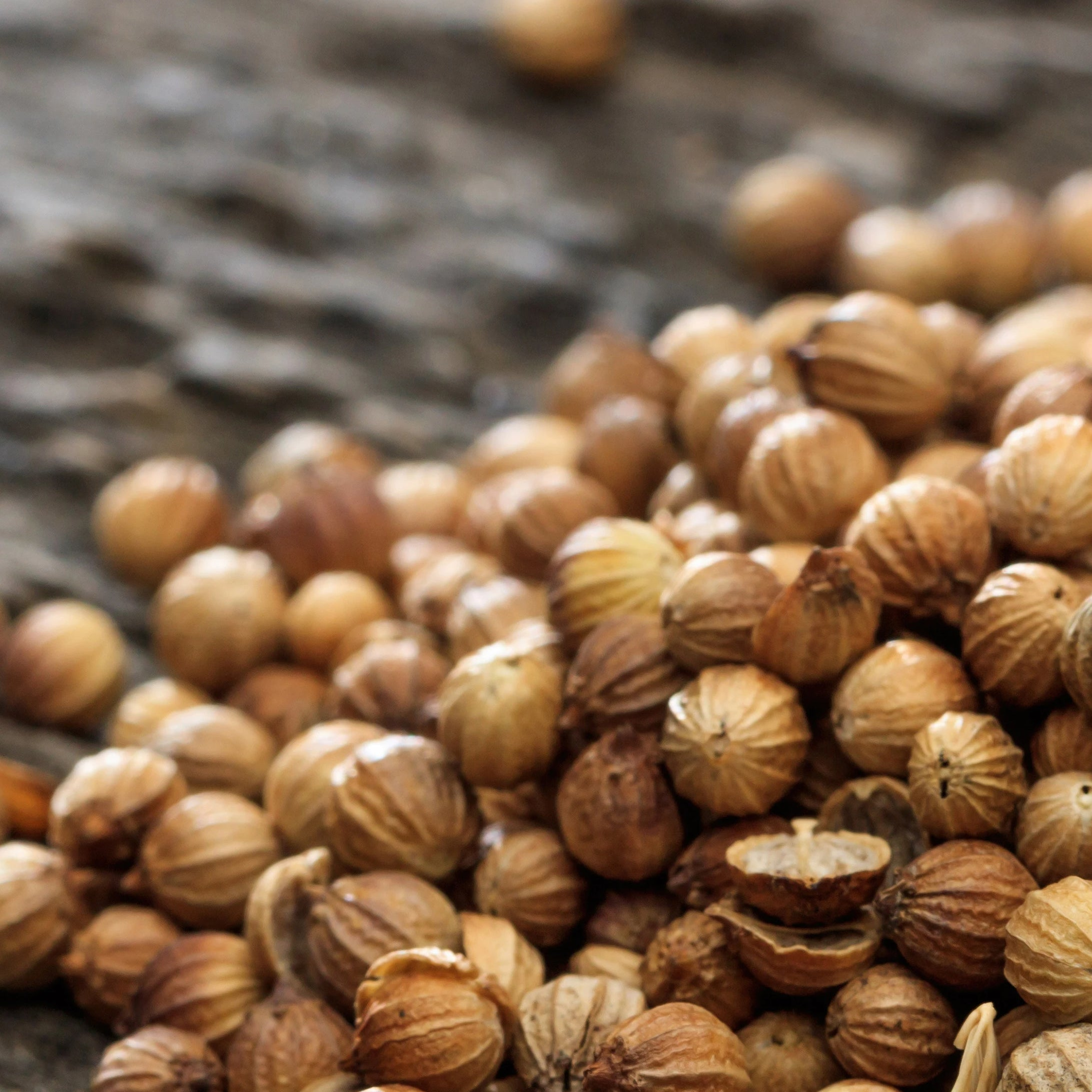 Coriander Oil used in Shaving and Other Hair Products