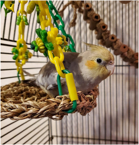 """A fun hammock made with a 7"""" by 7"""" seagrass mat suspended by plastic chain and adorned with little toys. Makes a great swinging perch or play gym for small birds. Ideal for lovebirds, budgies, small conures and cockatiels."""