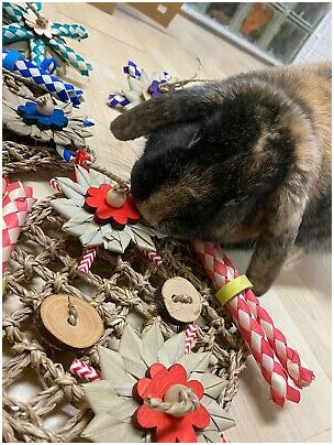 A seagrass activity mat made specially for bunnies (small birds will love it too) decorated with palm leaf flowers, paper straws, pine daisies, bamboo shredders, bitty bagels and natural wood coins (apple or birch). Can be used as a floor toy or attached to the side of a cage with soft plastic clips (included). Available in assorted colors.