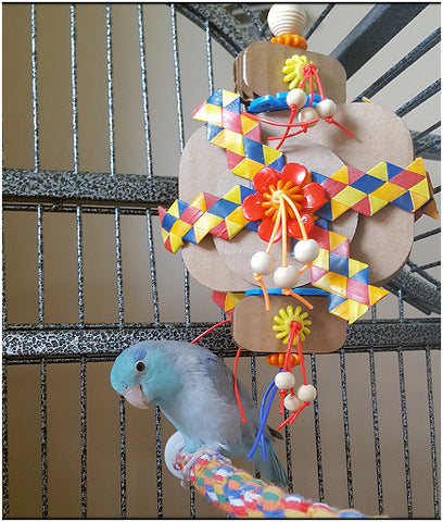 Parrotlet with Wacky Wafers shreddable bird toy by Birdy Boredom Busters
