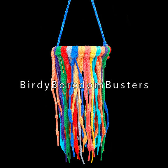If your bird loves shoelace or hoodie tips, this toy is for you! A plastic ring filled with colored shoelaces with aglets spaced throughout the laces. Available in two sizes.  Measures approx 4