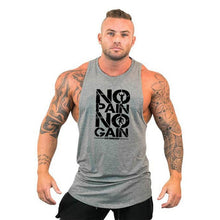 Load image into Gallery viewer, No Pain No Gain Tank Top Shirt/Hoodie