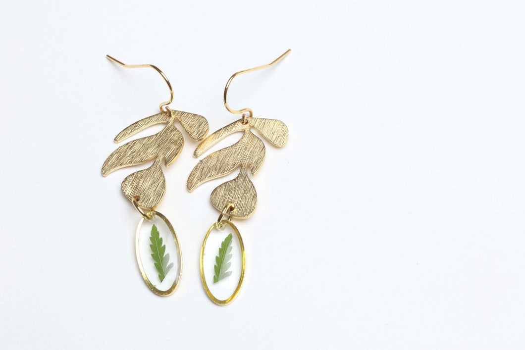 Succulent leaf and real fern earrings - textured brass
