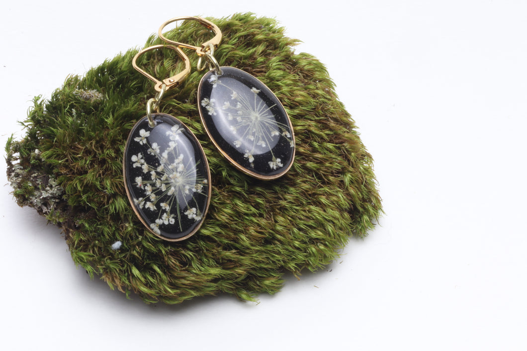 Black Queen Anne's Lace Earrings - Oval