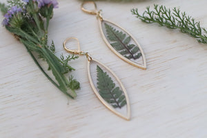 Fern Marquise Earrings