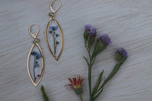 Load image into Gallery viewer, Forget me not flower gold marquise dangle earrings