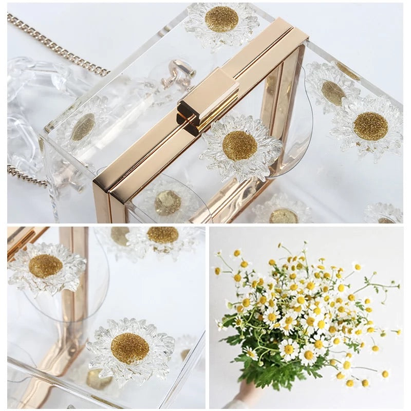 TRANSPARENT BOX BAG