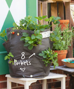 Bloombagz salad or strawberry planter. Alternatively it's a great storage solution. Made out of 100% recycled materials. Use indoors or out. Promotes growth of healthy roots.