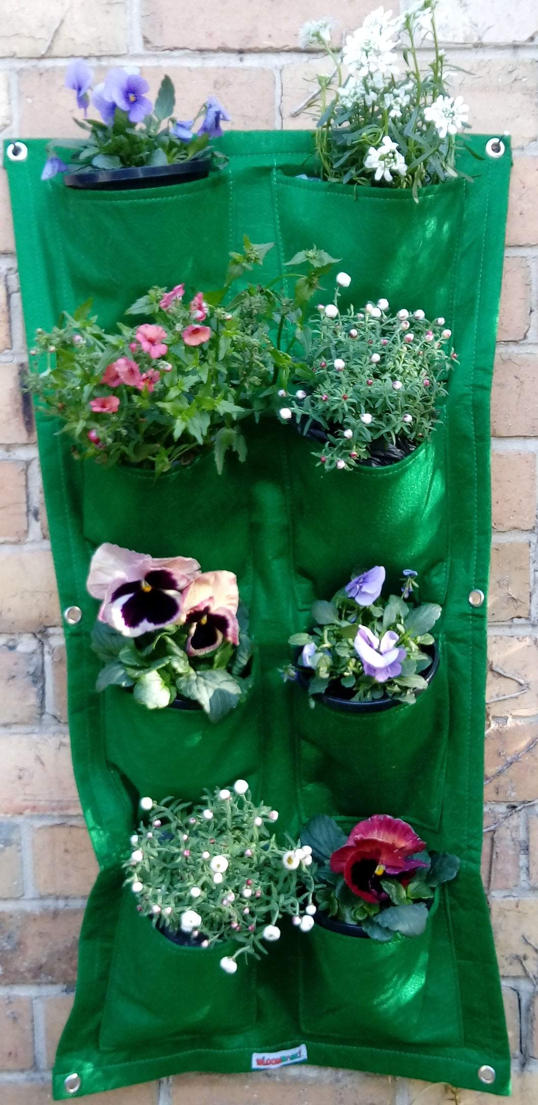 Bloombagz vertical garden, herb planter or wall hanging storage solution made out of recycled bottles