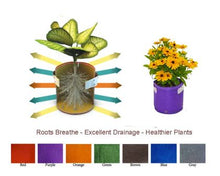 Load image into Gallery viewer, Garden care made easy with Bloombagz herb, shrub and flower planter with option to hang. Use indoor or outside gardens for lush plants all year round. Perfect landscape gardening for small spaces. Can also be used as a storage solution. Environmentally friendly made out of 100% recycled materials. Promotes growth of healthy roots and happy plants.