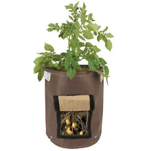 Load image into Gallery viewer, Growing potatoes is easy with the Bloombagz Potato Planter. Use indoor or outside gardens for lush plants all year round. Perfect landscape gardening for small spaces. Can also be used as a storage solution. Environmentally friendly made out of 100% recycled materials. Promotes growth of healthy potatoes. Velcro side-window flap allows you to conveniently harvest your spuds beneath the soil one at a time.