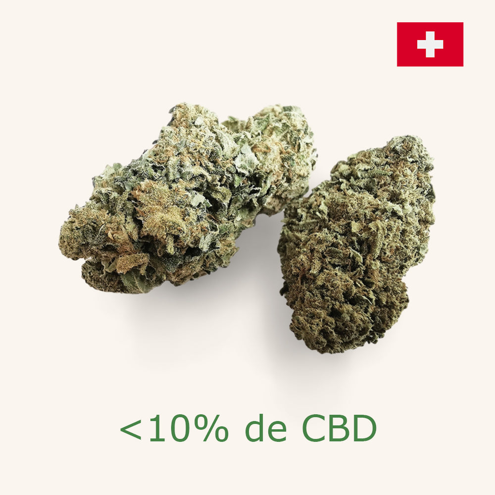 Blueberry Cheese du terroir Helvètes <10% [Indoor] - Spécial Achat Groupé - the-cbd-farmer