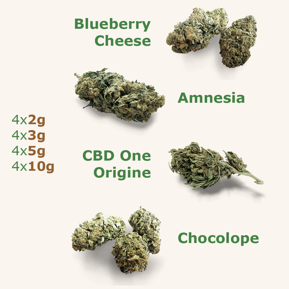 4-Pack : CBD One Origine, BlueBerry, Amnesia, Chocolope - the-cbd-farmer