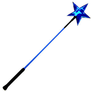 Riding Crop with Star