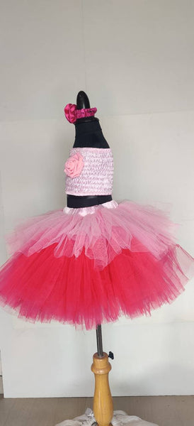 Bubblegum Tutu Skirt Top