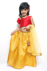 Festive Delight Lehenga Set